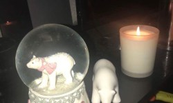 A large bright white Snow Globe that has a Polar Bear stood on all fours inside it next to a small white Polar Bear ornament also stood on all fours and a tall white burning candle in a clear glass jar on a glass cabinet, on a dark background.