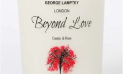 A tall white box that has George Lamptey London written in black writing, Beyond Love written in cursive pink writing, Rose and Cassis written in smaller Black writing and a picture of a small brown Cassis tree on it, on a white background.