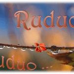 Romansų ir poezijos popietė - Rudeniui ir tau