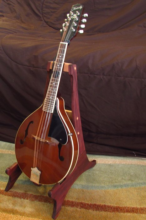 mandolin and guitar stands