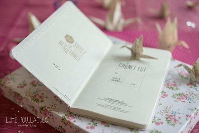 Carnet-rose-le-papier-fait-de-la-resistance-3
