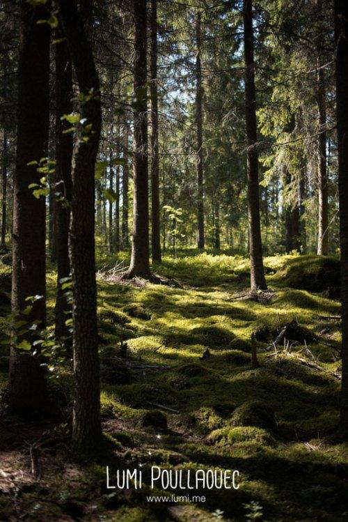 finlande-lumi-poullaouec-photographies-7