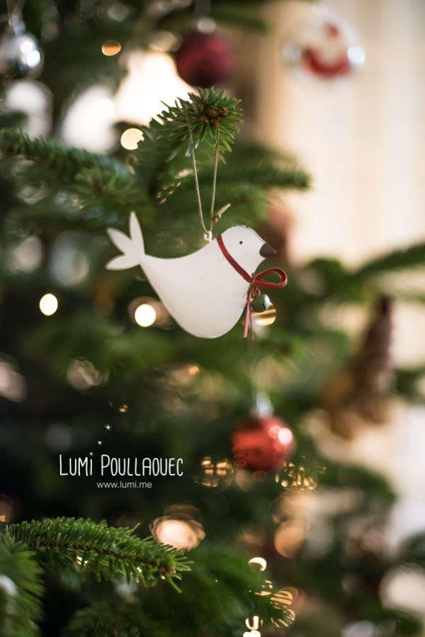 ©LumiPoullaouec-Noel-1