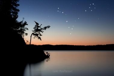 La constellation du Poisson