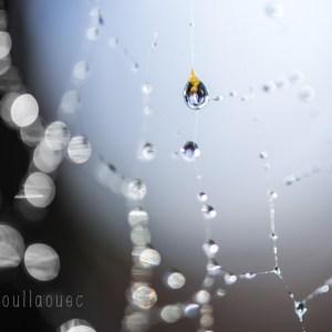 Lumi Poullaouec - photographieLumi Poullaouec - photographie