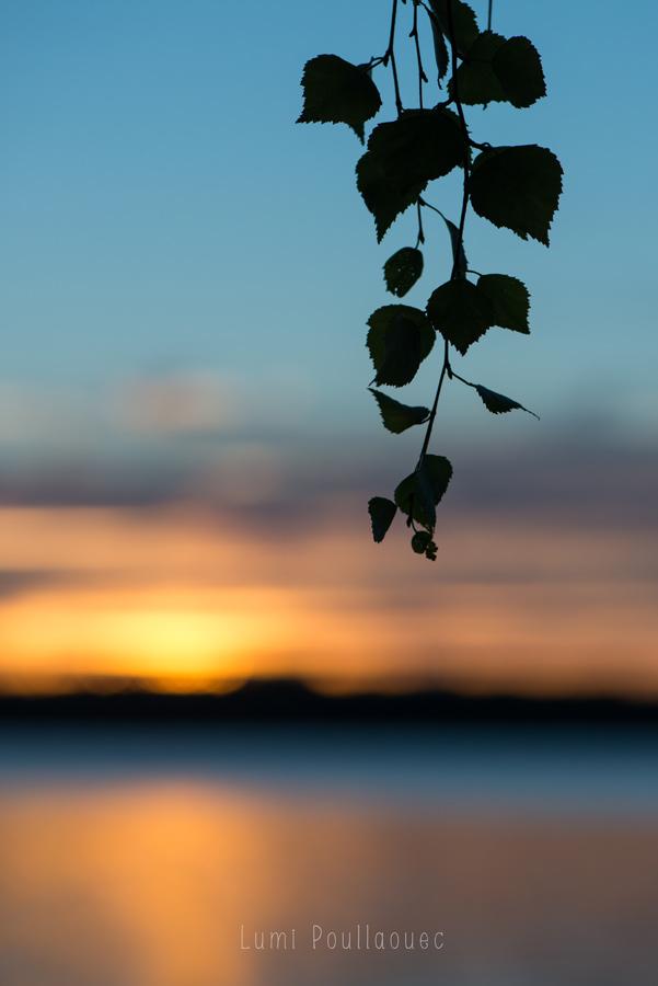 Lumi Poullaouec - photographie Soleil levant