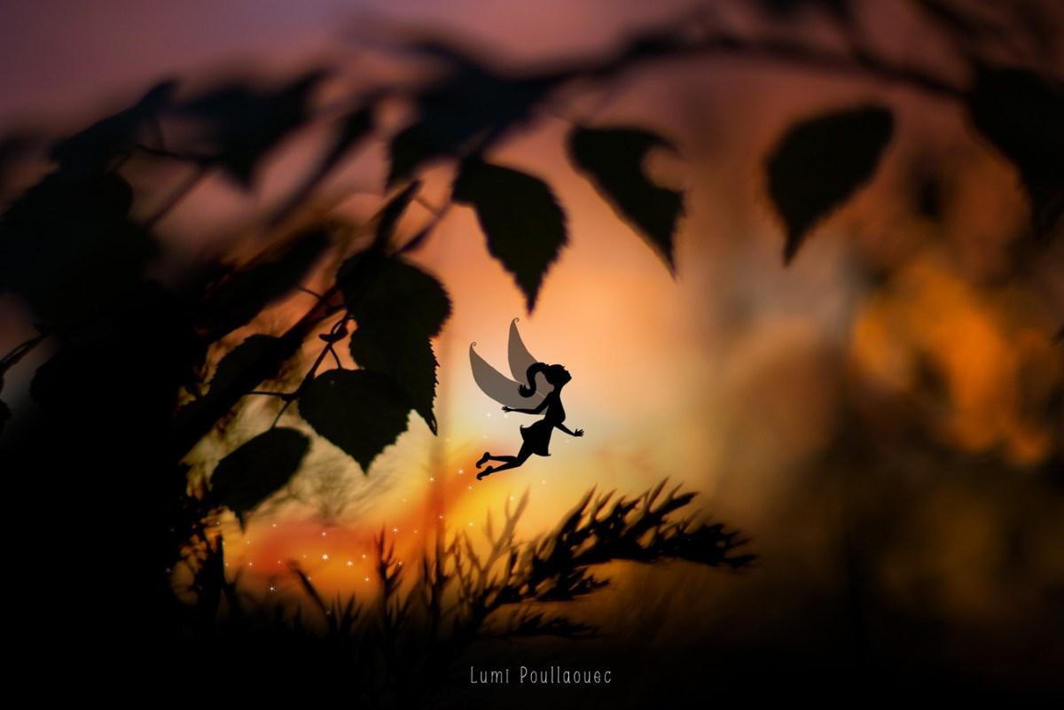 L'Empourpreuse au pays du soleil de minuit