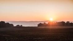Photo prise par Lumi Poullaouec d'un magnifique lever de soleil sur les champs de Seine et Marne. De la brume apparait à l'horizon.
