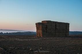Photo prise par Lumi Poullaouec d'un magnifique lever de soleil sur les champs de Seine et Marne. Des bottes de foin son dans le cadre.