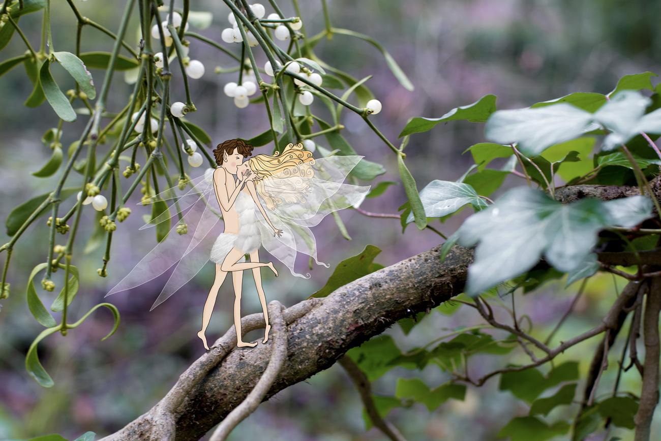 Les Éphémères s'embrassant sour une branche de gui - Lumi Poullaouec - Création - Photographie et illustration féérique