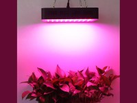 Lightmetunnel 300W Led Grow Light Review - Help Indoor ...