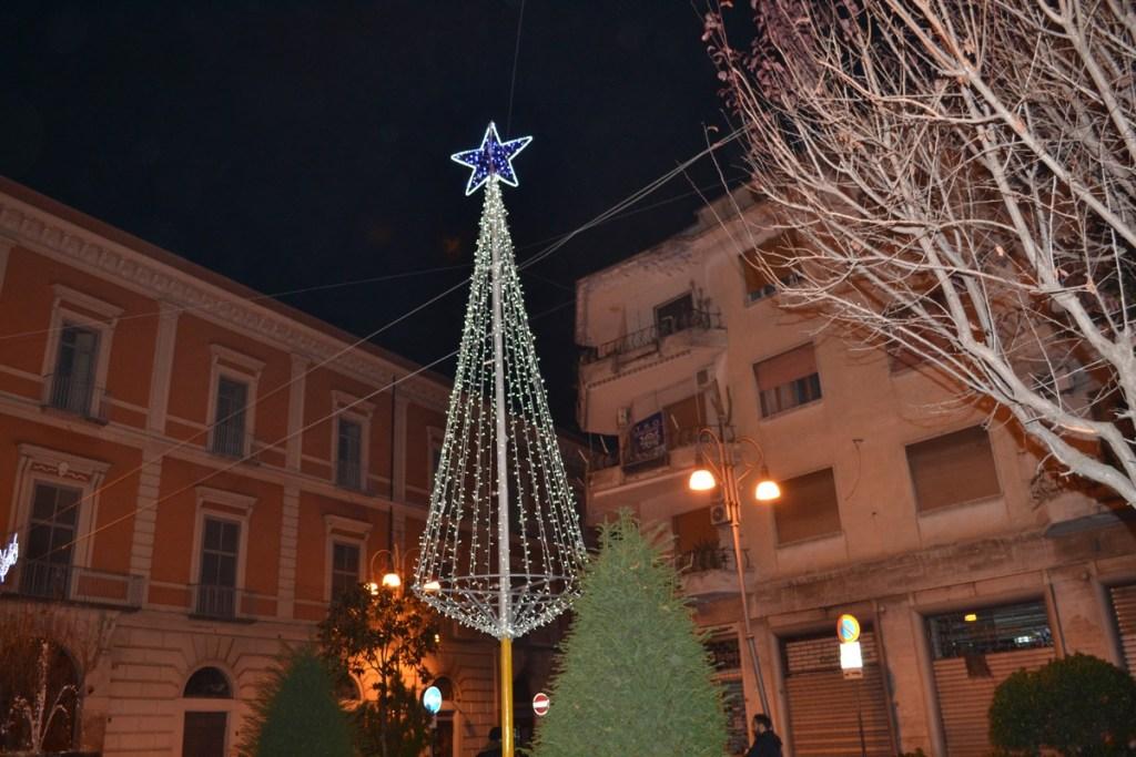 (Foto 15- 62) Albero stilizzato bianco 8m