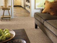 Luna Carpet Showroom  Floor Matttroy