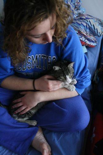 luigia e i gatti