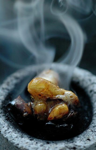 Leo Incense • Luna's Grimoire