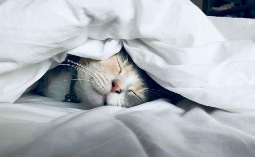 Los mayores beneficios de dormir con sábanas térmicas