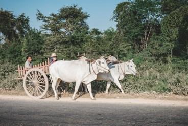 Myanmar-2150