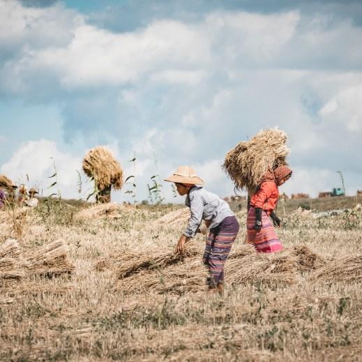 Myanmar-3963-2