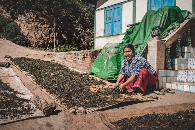 Myanmar-4121