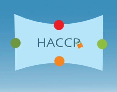 HACCP - אייקון בטיחות מזון