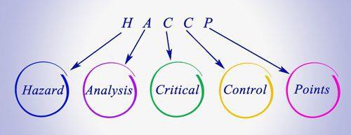 לוגו של HACCP