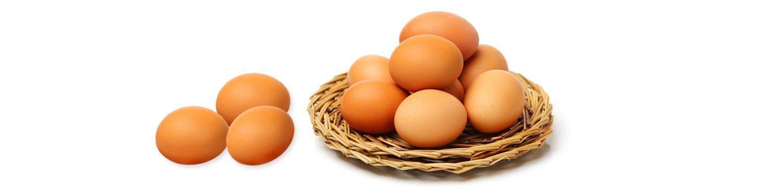 -ביצים-2
