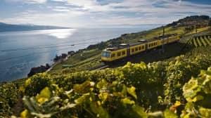 Unlimited travel... Swiss Pass