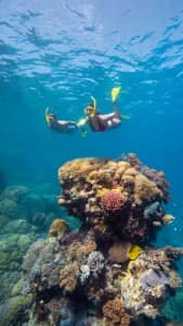 Access to Australia's natural wonders...Great Barrier Reef