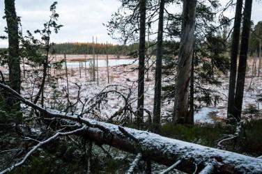 Ylöjärvi 12/2011