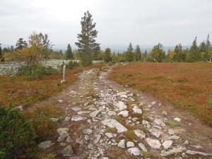 Urho Kekkosen kansallispuiston helikopterin laskeutumispaikat raivataan laskeutumiskuntoon