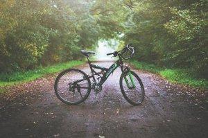 Pyöräily on yhä suositumpi tapa viettää yhdessä syyslomaa