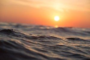 Merenkurkun maailmanperintöalueen käyntimäärä kasvoi