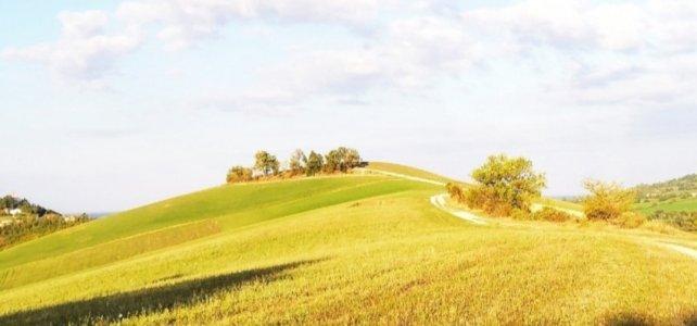 4 sentieri a Quattro Castella: tra le meravigliose colline di Reggio Emilia