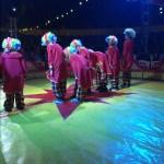 Schul-Zirkus