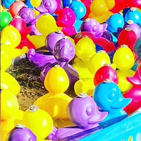Entenpopenten - Nach den Ferien ist vor den Ferien - Freitagszeuch