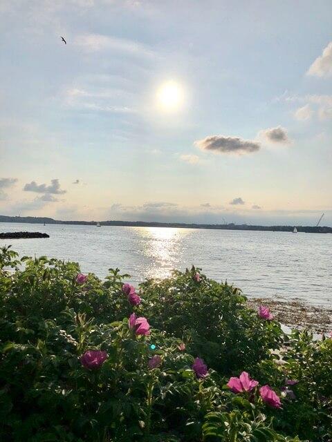Moeltenorter Frühling - Sommerfeeling - Freitagszeuch