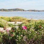 Herbstferien Woche 3 – Freitagszeuch