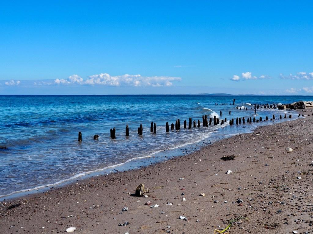 Ostsee bei Behrensdorf - Woche 7 der Zwangspause – Freitagszeuch