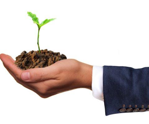 Sistema de Gestión Ambiental basado en la Norma ISO 14001