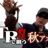 【堤防で一人勝ち】これまで取れなかったアタリが取れる!新エギング釣法「GTR」ってどんな釣り方?