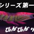 ぴょんぴょんサーチってなんだ?ヤマシタの新型エギが3月に登場するぞ!