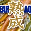 【ルアー界の今年最大のイノベーション!?】旨いワーム「エコギア熟成アクア バグアンツ」が爆誕!