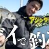 アジングのWEB動画新番組「アジングトラベル」第2回「 淡路島でデイアジを狙う!」の配信がスタート