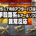 【アフタースポーンバス攻略のヒント】5~7月は甲殻類系ルアー&リグに異常反応!その理由は?