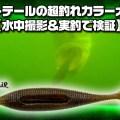 ハートテールの超釣れカラー大検証【水中撮影&実釣で検証!56cmバイトシーンの撮影にも成功】寄稿=Electric Eel Shock森本明人