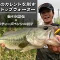 霞ヶ浦水系、夏のカレントを制するトップウォーター!ダイワ「スティーズペンシル60F」