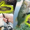 秋のオカッパリ川バス釣りで効果的なチャター系とスイムジグの使い方