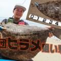 サーフから狙う大型ヒラメ!  70cmオーバーの「座布団ヒラメ」を選んで釣る方法とは?