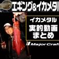 【イカメタル動画まとめ】初心者にもオススメ!メジャークラフト・ヒロセマンによる「最新イカメタル」