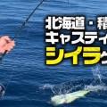 【人気急上昇中】北海道・積丹シイラのキャスティングPOWERゲーム